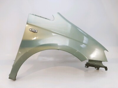 Right front fender - 51712988