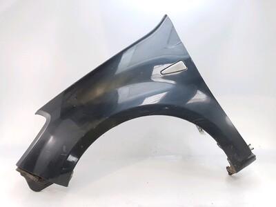 Left front fender - 631017245R